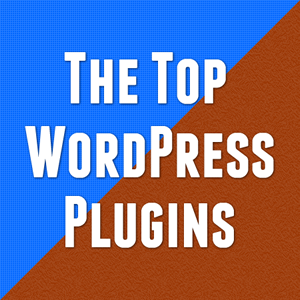 The Top WordPress Plugins Used By Professional Website Designers